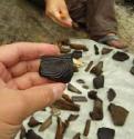 В Архангельске пройдет всероссийский форум молодых археологов