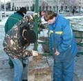 В Архангельске устанавливают главную городскую ёлку