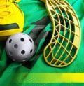 В Архангельске прошел турнир по флорболу среди девочек 4-6 классов