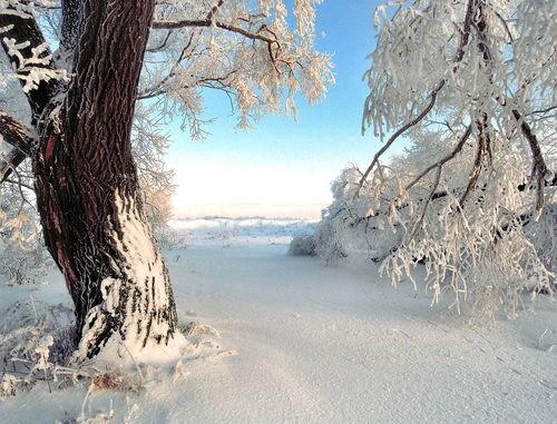 В Архангельской области снова похолодает до минус тридцати