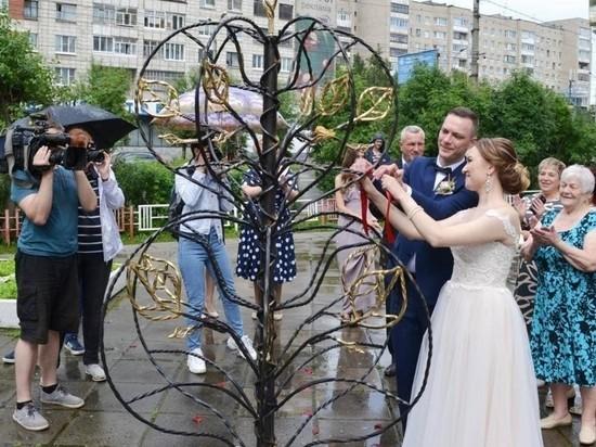 «Дерево любви» снова появилось в Архангельске
