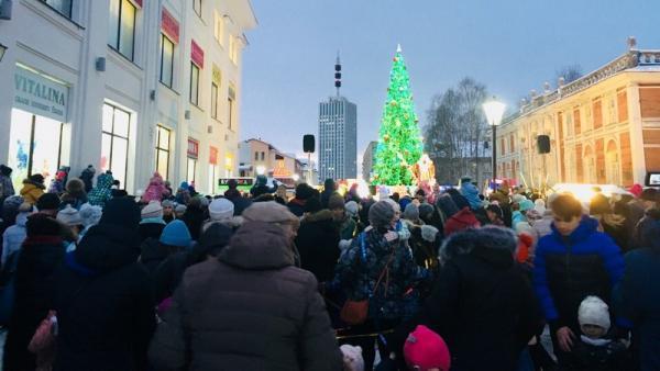 Новогодние ёлки появятся в округах Архангельска к середине декабря