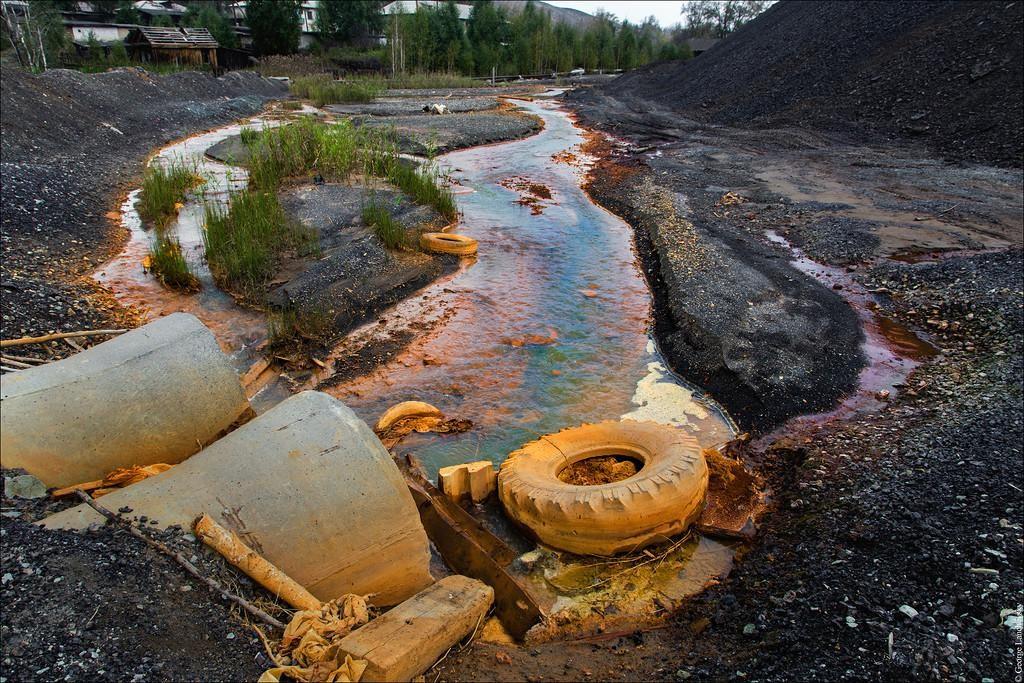 Экологические катастрофы в 2019 году в России: наиболее острые и опасные проблемы-невидимки современности